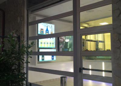 Portone sezionale vetrato LUX - Ossidato naturale con porta laterale